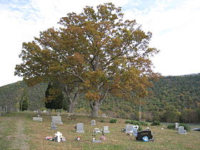 Ginevan Cemetery Little Cacapon WV 2008 10 13 03.jpg