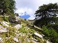 Gipfellandschaft, Thassos.JPG