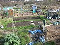 Gledhow Valley Allotments 18 March 2019 8.jpg