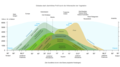 Globales Profil - Höhenstufen der Vegetation.png