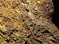 Gold vein stockwork in limonite (Gold Flake Vein, Farncomb Hill, near Breckenridge, Colorado, USA) 5 (17078046392).jpg