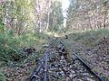 Grambow Grambower Moor Schienen Torfabbau 2013-10-06 4.JPG