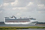 Grand Princess and Football on TV.JPG