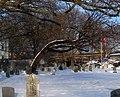 Gravesend Cemetery snow jeh.jpg