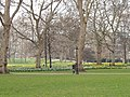 Green Park with daffodils - geograph.org.uk - 379822.jpg