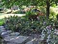 Green Spring Gardens in September (22170311733).jpg
