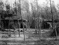 Hövdingen Skogshönans by. Se . Nordenskiöld, Indianlif. Sthlm, 1910, tafla 3. Gran Chaco. Bolivia - SMVK - 004778.tif