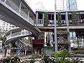 HK 中環 Central 美利道 Murray Road 天橋 footbridge near 琳寶徑休憩公園 Lambeth Walk Rest Garden March 2020 SS2.jpg
