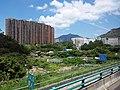 HK Bus 962 view 屯門公路 Tuen Mun Road 青山灣段 Castle Peak August 2018 SSG 01.jpg
