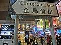 HK TST night 金馬倫里 Cameron Lane road name sign Mar-2013.JPG