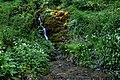 Hack Fall Wood Flickr D 08.jpg