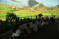 Hacking Space Participants Watch Panorama on Human Evolution - Science Exploration Hall - Science City - Kolkata 2016-03-29 2970.JPG