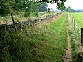 Hadrian's Wall Path - geograph.org.uk - 207960.jpg
