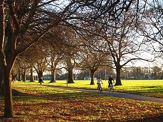 Hagley Park - Image: Hagley Park 02 gobeirne
