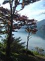 Hakone Ashinoko lake dsc05424.jpg