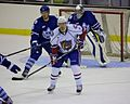 Hamilton Bulldogs Vs Toronto Marlies.jpg