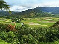Hanalei-Valley-Kauai-Trailblazer-janinesprout.jpg