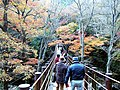 Hananuki valley Shiomi-taki bridge.jpg