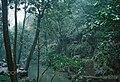Hangzhou (133925053).jpeg