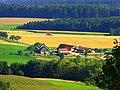 Harvest - panoramio (7).jpg