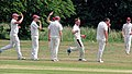 Hatfield Heath CC v. Takeley CC on Hatfield Heath village green, Essex, England 18.jpg