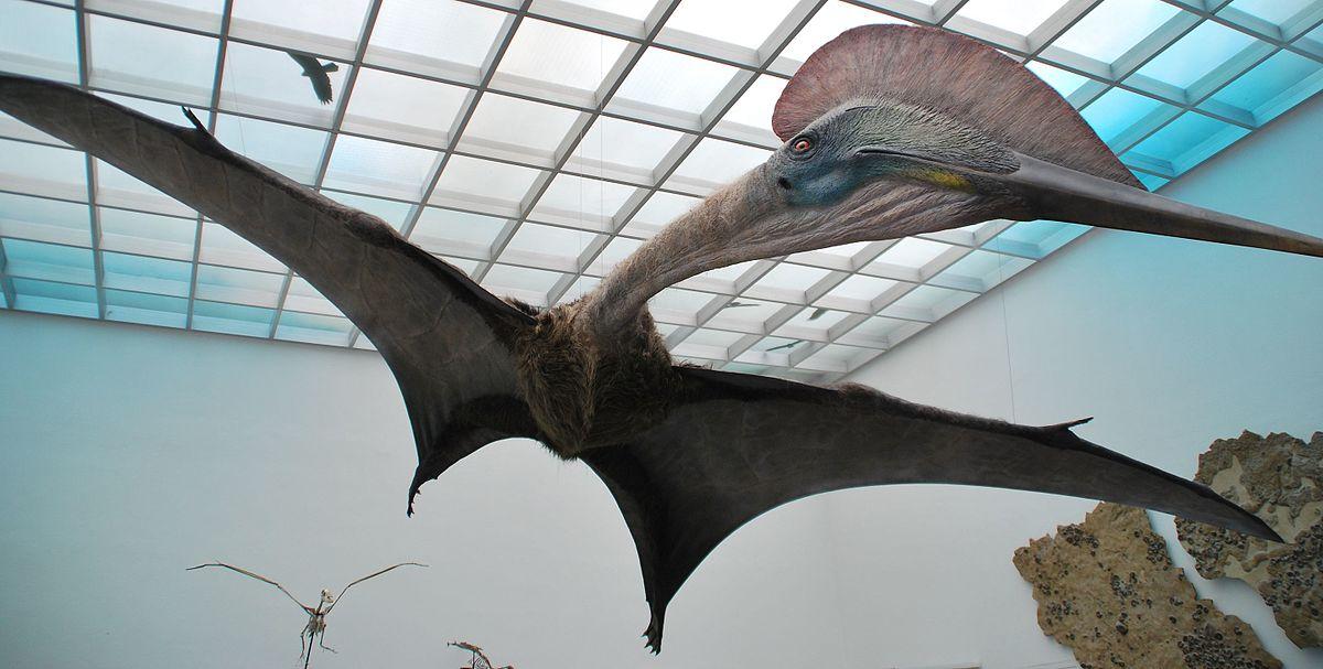 Azhdarchidae – Wikipedia