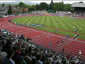 Hayward Field - Spectators watch the 110 m hurdles