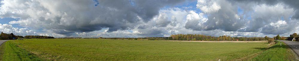 Meadow in Laitse village