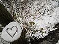 Herzchen im Schnee für Soldatengraben-Baumgespenst in Marburg-Ockershausen 2017-01-10.jpg