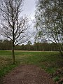Heslington Common - geograph.org.uk - 158862.jpg