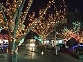 Higashihonmachi, Omura, Nagasaki Prefecture 856-0831, Japan - panoramio (2).jpg