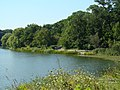 High Park in August - panoramio - atomboy.jpg