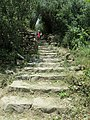 Hiking path from Vernazza to Corniglia 2.jpg