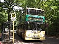 Historisches Autobus an der Havelchaussee - geo.hlipp.de - 26245.jpg