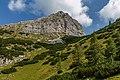 Hochzinödl, Gesäuse National Park, Ennstaler Alpen, Austria 01.jpg