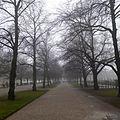 Hofgarten - panoramio (8).jpg