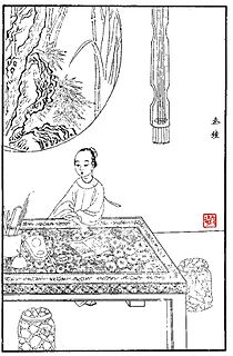 Qin Zhong (<i>Dream of the Red Chamber</i>)