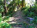Hu Shih Park Stair on Hill 20120721b.jpg