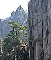 Huangshan, China (YELLOW MOUNTAIN-LANDSCAPE) (2409745699).jpg