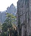 Huangshan, China (YELLOW MOUNTAIN-LANDSCAPE) (2409745699).jpg