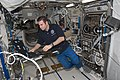 ISS-17 Gregory Chamitoff works in the Columbus lab.jpg