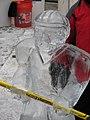 Ice sculpture (3157209633).jpg