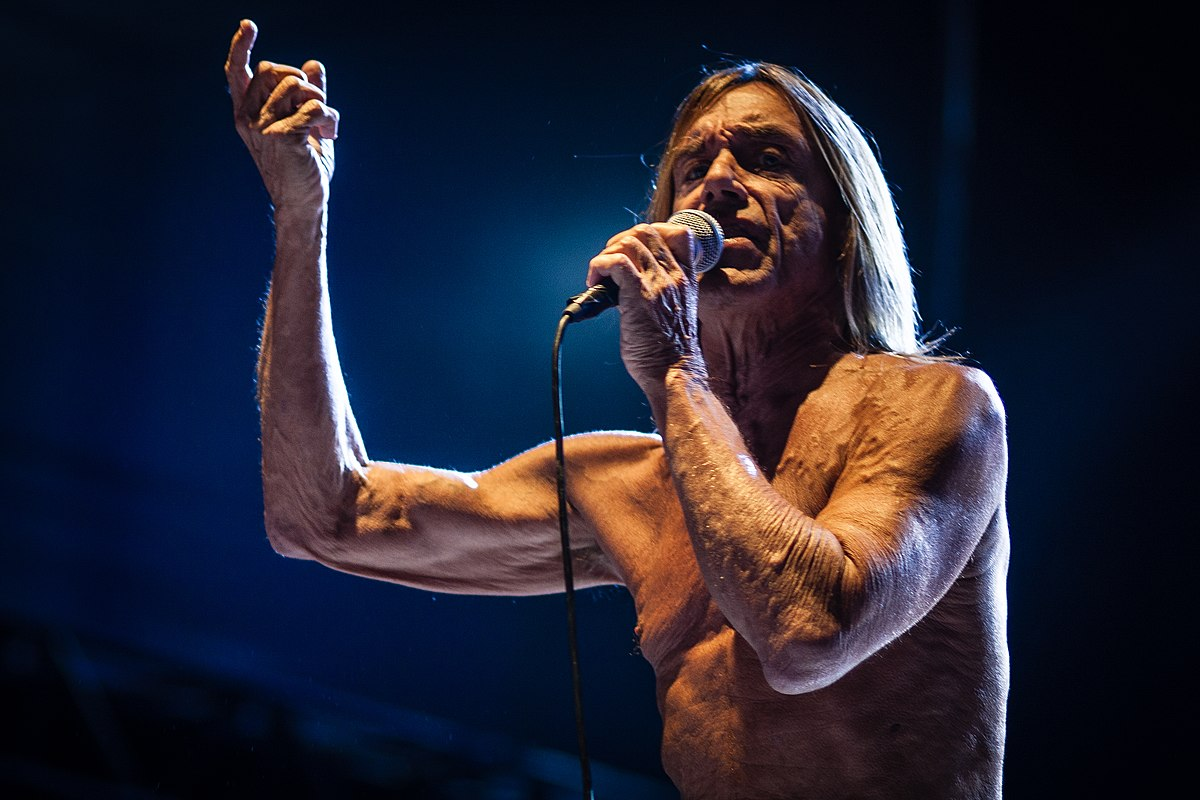 Iggy And The Stooges - Shake Appeal