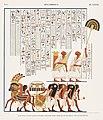 Illustration from Monuments de l'Egypte de la Nubie by Jean-François Champollion, digitally enhanced by rawpixel-com 17.jpg