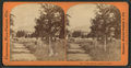 In the Grounds, North of the Hotel, by Thomas Houseworth & Co..png