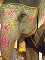India-6596 - Flickr - archer10 (Dennis).jpg