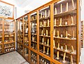 Institutul Botanic, Muzeul Botanic, Cluj-Napoca-9951.jpg