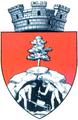 Interbelic Baia Mare CoA.png