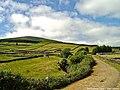 Interior da Ilha Terceira - Portugal (4688245220).jpg