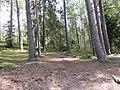 Inturkės sen., Lithuania - panoramio (22).jpg